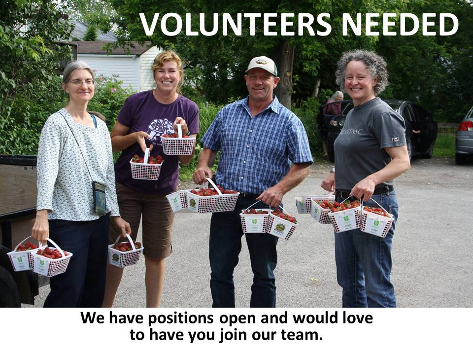 Please join our volunteer team